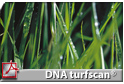 DNA multiscan®