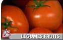 Légumes Fruits